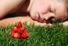 Free Boy And Strawberries Stock Photo - 18457900