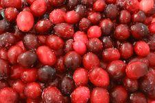 Free Cranberry Stock Image - 18458231