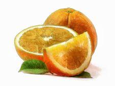 Free Orange Stock Photography - 18458832