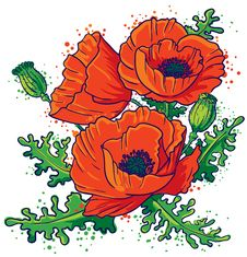 Free Poppies Royalty Free Stock Photo - 18459965