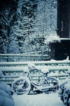 Free Wintertime Stock Photography - 18460442