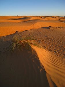 The Arabic Desert Stock Photography