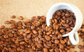 Free Cup Filled With Coffee Beans Royalty Free Stock Photo - 18474725