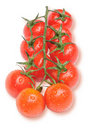 Free Cherry Tomatoes On The Branch With Water Drops Royalty Free Stock Photo - 18477375