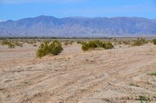 Free Desertscape Royalty Free Stock Photography - 18471957