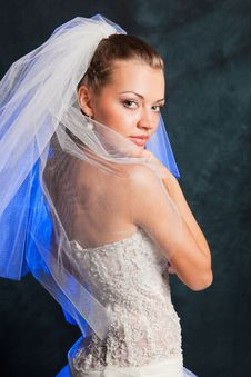 Free Beautiful Bride Stock Image - 18472161