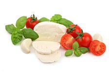 Free Italian Salad Ingredients 2 Stock Photography - 18473502