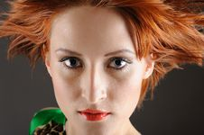Free Beauty Woman With Healthy Red Flying Hair Royalty Free Stock Images - 18474199