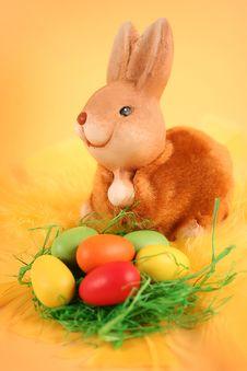 Free Bunny Royalty Free Stock Photography - 18476727