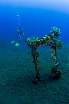 Free Diver With Liberty Wreckage Stock Photos - 18477133