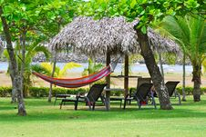 Free Hammock Hanging On The Lawn Stock Image - 18479481