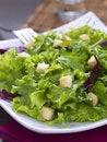 Free Green Salad Stock Photography - 18481562