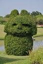 Free Trimmed Bush In Garden Stock Image - 18488751