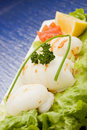 Free Squid With Lettuce On Blue Glasstable Royalty Free Stock Photography - 18489887