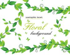 Free Floral Card With Plants Royalty Free Stock Photo - 18480285
