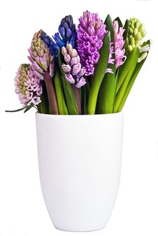 Free Blooming Hyacinths In A Vase Stock Photography - 18480582