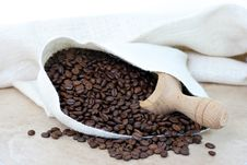 Free Coffee Beans Spilling From Burlap Sack. Royalty Free Stock Photo - 18480975