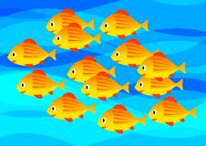 Free Orange Fish Stock Photography - 18481102