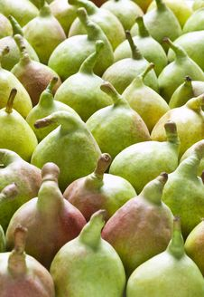 Free Green Pears Stock Image - 18482191