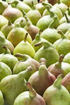Free Pears Stock Images - 18482364