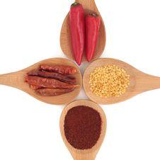 Chili Selection Stock Image