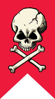Free Skull & Crossbones Flag Stock Photo - 18484190