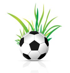 Free Vector Soccer Ball Royalty Free Stock Photo - 18484945