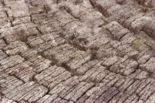 Close-up Of A Old Wooden Texture Stock Image