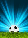 Free Football Or Soccer Ball On Grass. EPS 8 Stock Image - 18490111