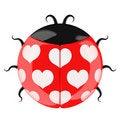 Free Cute Lady Bug. Stock Photos - 18498933