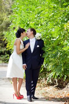 Free Bride And Groom Outdoors Royalty Free Stock Photography - 18490847