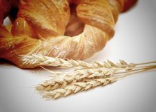 Free Bread With Wheat Ears Royalty Free Stock Photo - 18492495