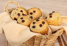 Free Chocolate Chip Muffins Stock Image - 18492791