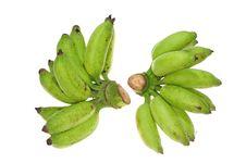 Free Green Unripe Banana Stock Photos - 18492833