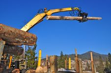 Loading Of Logs On Transport Stock Photo