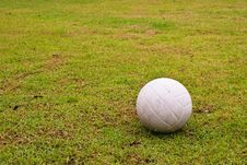 Free White Ball On Green Grass Royalty Free Stock Photos - 18498378