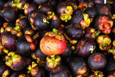 Free Mangosteen Royalty Free Stock Images - 18498639