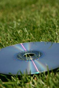 Silver DVD On Green Grass Stock Image