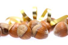 Free Little Hazelnuts Royalty Free Stock Photo - 1853285