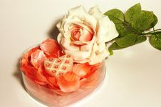 Free White Rose Candles In Box Royalty Free Stock Photography - 1859347