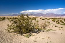 Free American Desert Stock Photography - 18500332