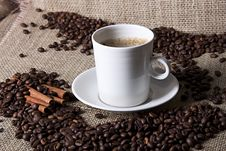 Free Cup Of Coffee With Cinnamon And Coffee Grains Stock Images - 18502354