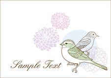 Free Lovely Birds Royalty Free Stock Image - 18505316