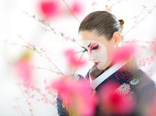Free Japan Geisha Woman With Creative Make-up Stock Photo - 18510950