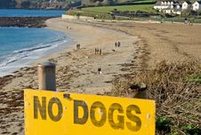 Free No Dogs Allowed Stock Image - 18514651