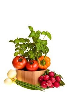 Free Different Ripe Vegetables Royalty Free Stock Photography - 18518187