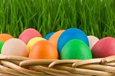 Free Eggs Royalty Free Stock Photo - 18520715