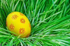 Free Egg Stock Image - 18520721