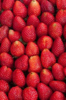 Free Strawberry Royalty Free Stock Images - 18524029