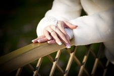 Free Hands Of The Bride Stock Photos - 18524703